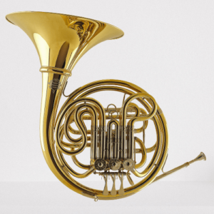 A Gebr F Bb double-horn (model 403)