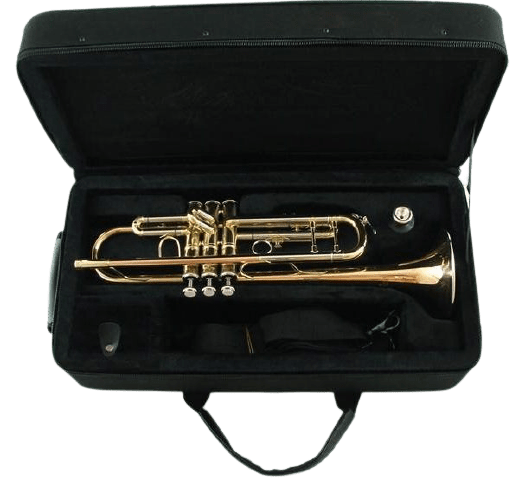 A used trumpet in a case