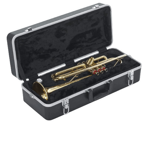 a case with a trumpet inside